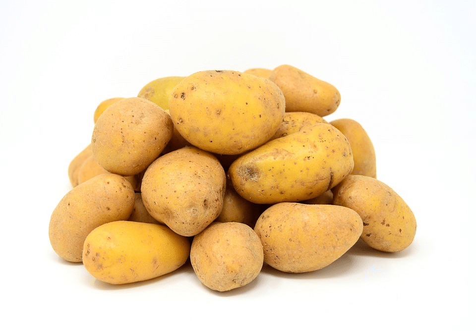 Vzdáváte se brambor a sacharidů v nich? Obsahují i kvalitní bílkoviny pro naše svaly! 2