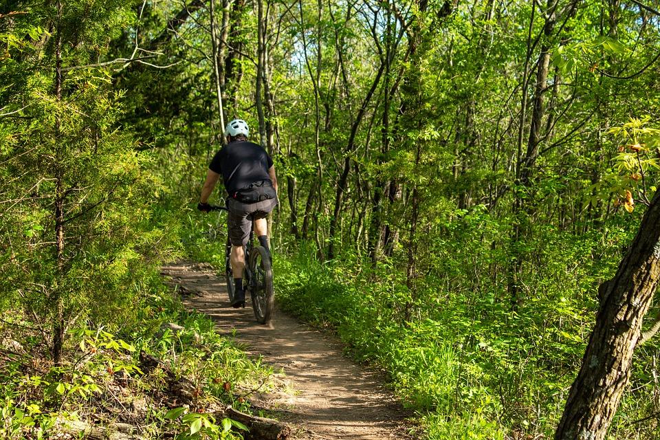 Kam nejen za bahenní koupelí nebo zábalem, ale i cyklistikou a procházkami? 14