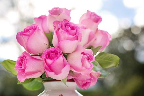 Jaké květiny o mně co říkají? 2
