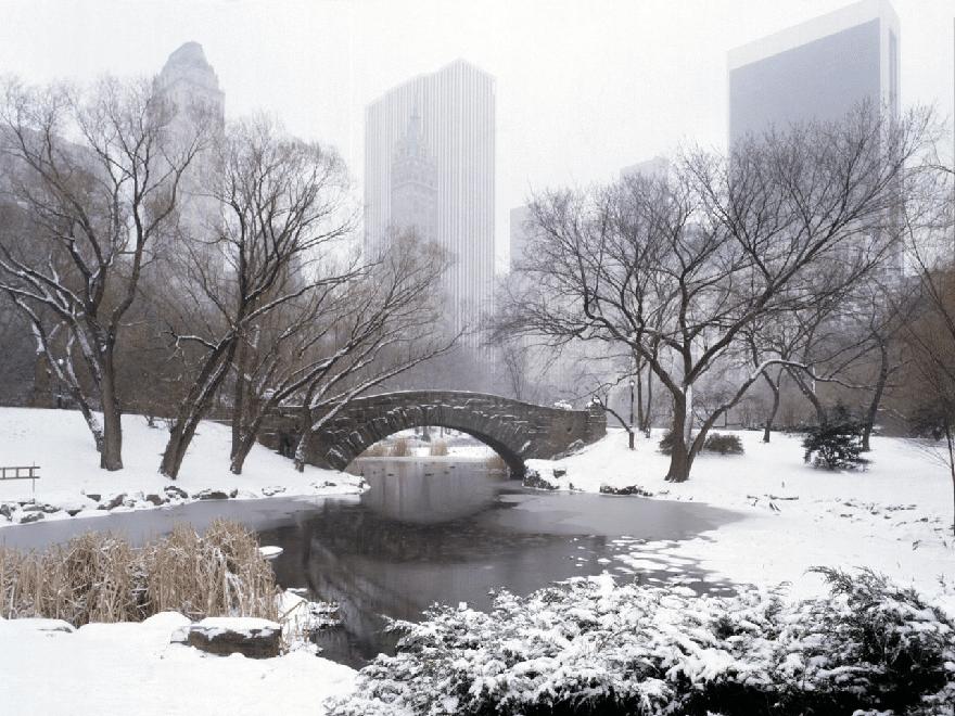 Tipy na zimní výlety. Které zahrady stojí za to vidět i v zimě. 1