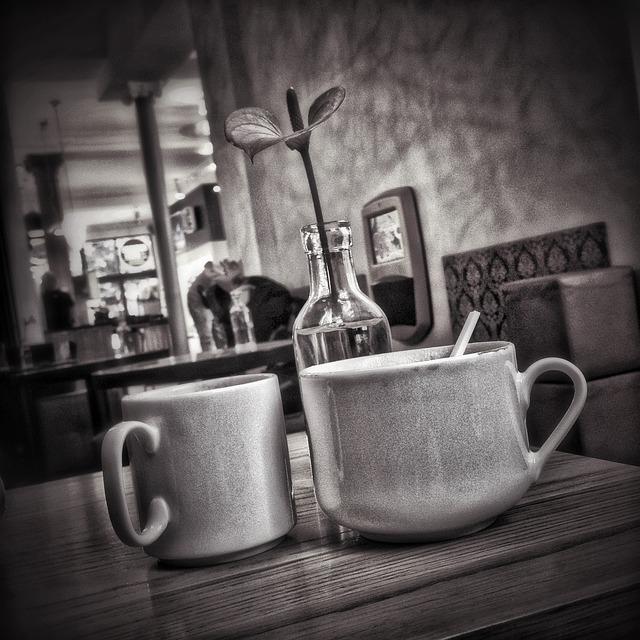 Něco málo o kávě 1