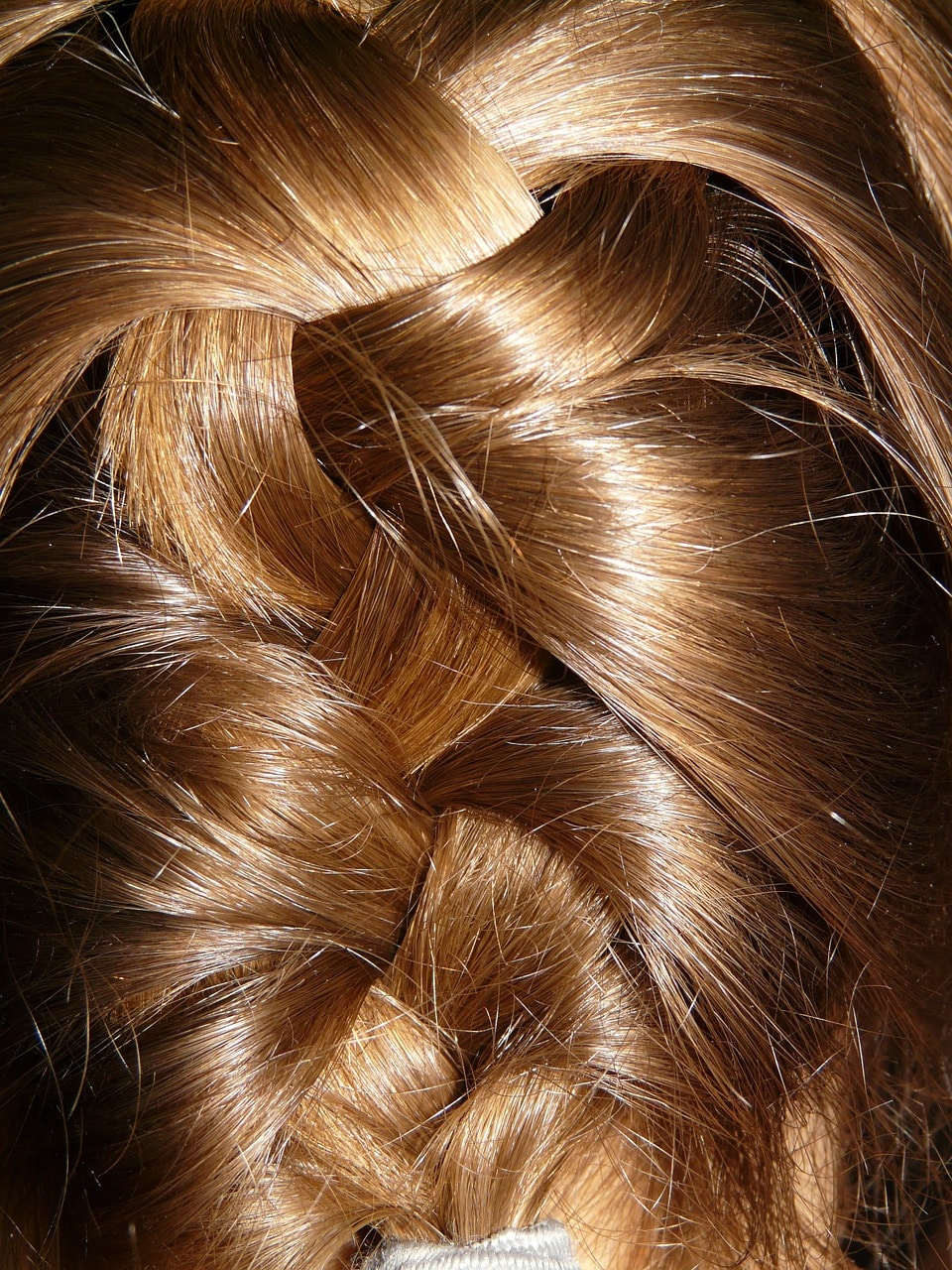 hair-5663_1280