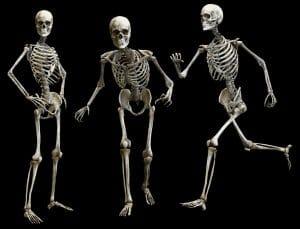 kosti 1