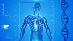 kosti c 1