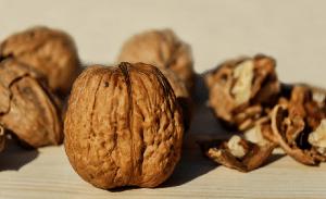ořechy 1
