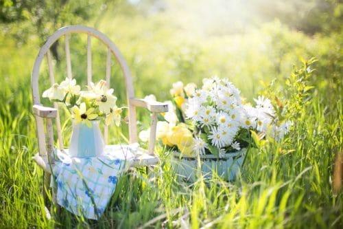 summer still life 779386 1280 500x333 Do puntíku dotažená zahradní párty