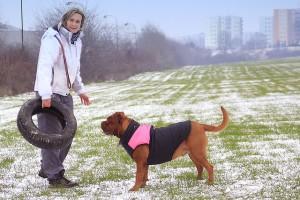 winter dog 1481617887 300x200 Je součástí vaší rodiny pes? Pozor na jeho zdraví v zimě!